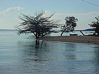 Vista da praia de Aramanaí