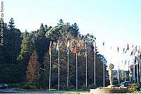 Rótula das Bandeiras