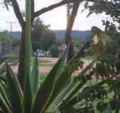 Pousadas - São Jorge - GO