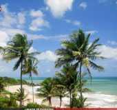 Fotos - Praia de Tambaba - Naturalista - PB
