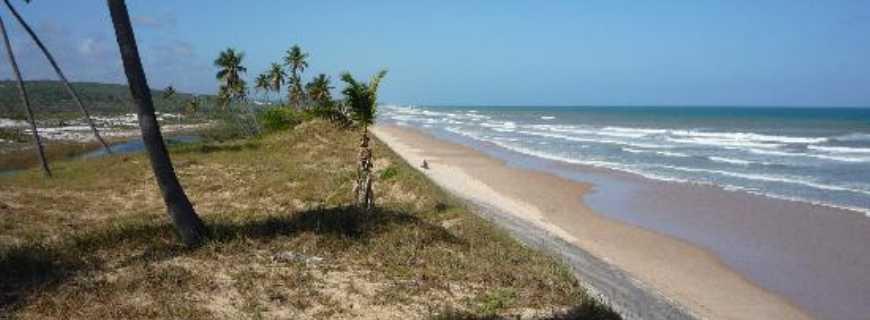 Praia de Massarandupió - Naturalista-BA