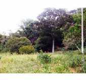 Fotos - Córrego dos Fernandes - CE