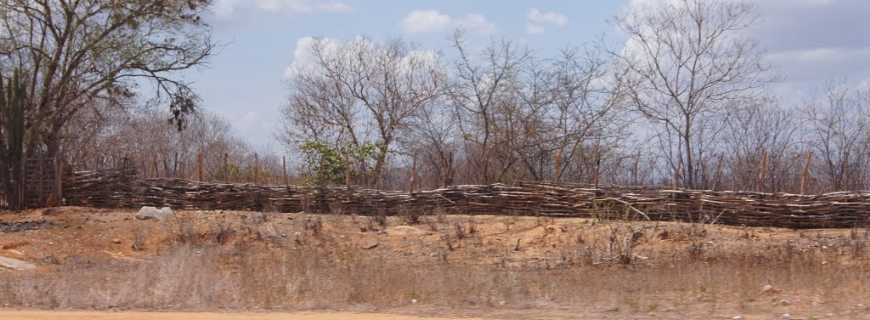Jacaúna-CE