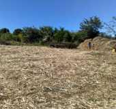 Fotos - Jamacaru - CE