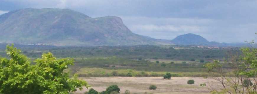 Umari-CE