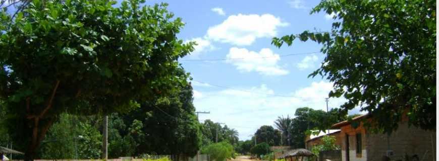 Caatinga-MG