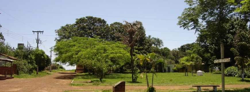 Jardinésia-MG
