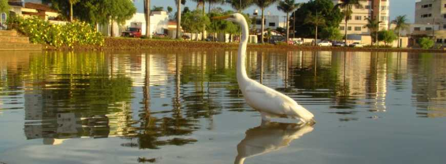 Lagoa Formosa-MG