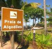 Fotos - Algodões - BA