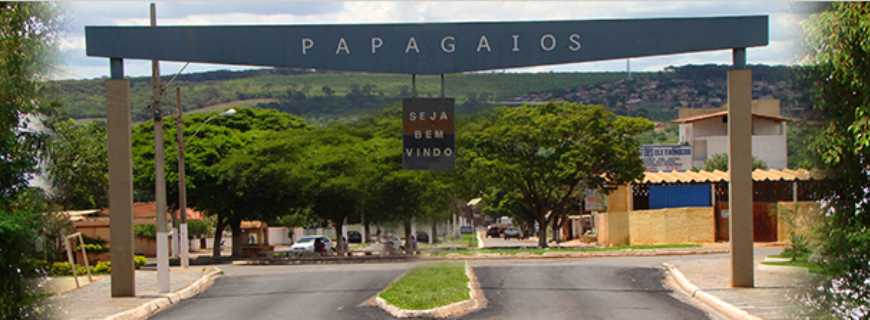 Papagaios-MG
