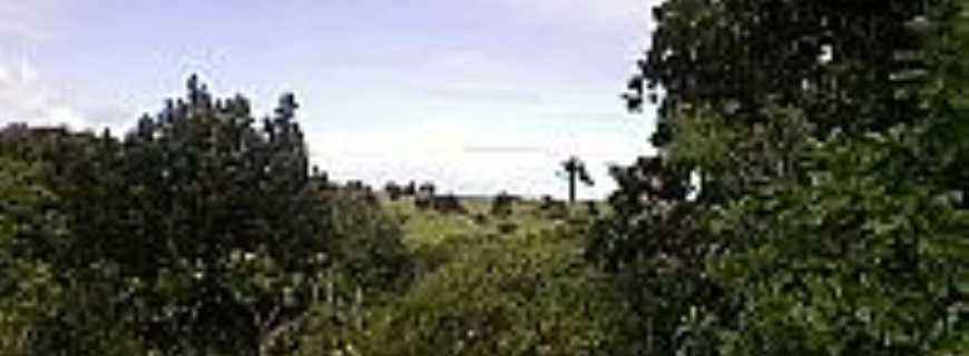 Baixa do Palmeira-BA