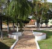 Fotos - Corguinho - MS