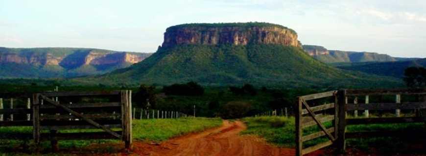 Rio Verde de Mato Grosso-MS