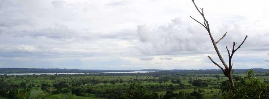 Palestina do Pará-PA