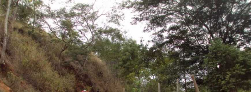 São Joaquim do Tapará-PA