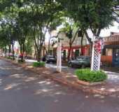 Fotos - Nova Santa Rosa - PR