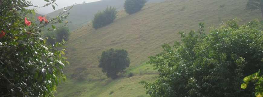Monte Verde-RJ