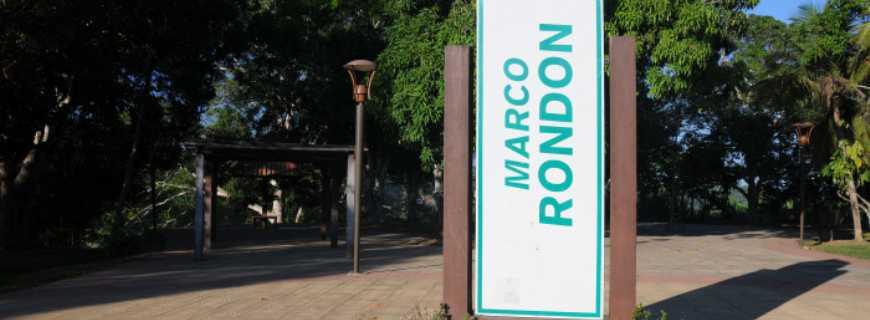 Marco Rondon-RO