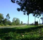 Fotos - Miraguaia - RS