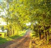Pousadas - Passo Burmann - RS
