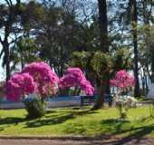 Fotos - Viadutos - RS