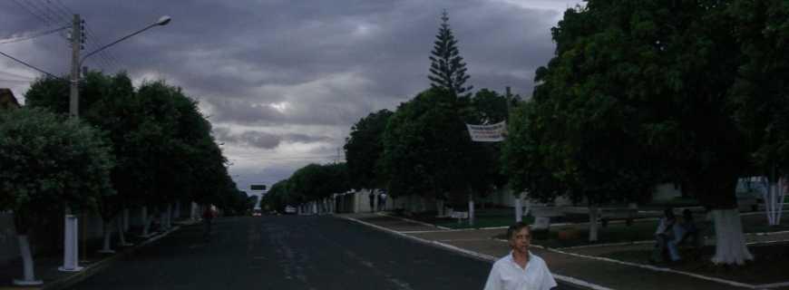 Flora Rica-SP