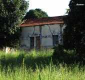 Fotos - Nogueira - SP