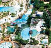 Óleo São Paulo fonte: www.ferias.tur.br