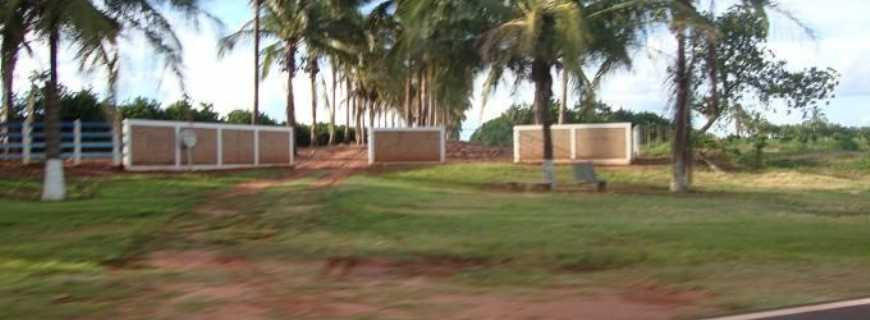 Palmeira D'Oeste-SP