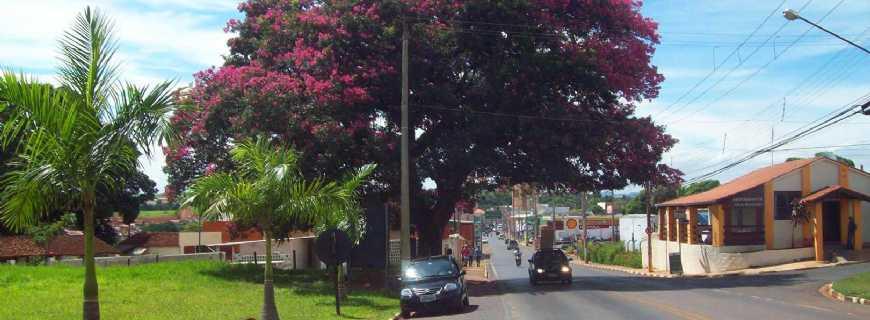 Santo Antônio de Posse-SP
