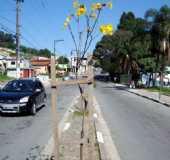 Pousadas - Santo Antônio do Paranapanema - SP