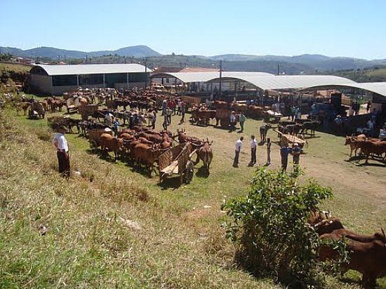 Silvianópolis Minas Gerais fonte: www.ferias.tur.br