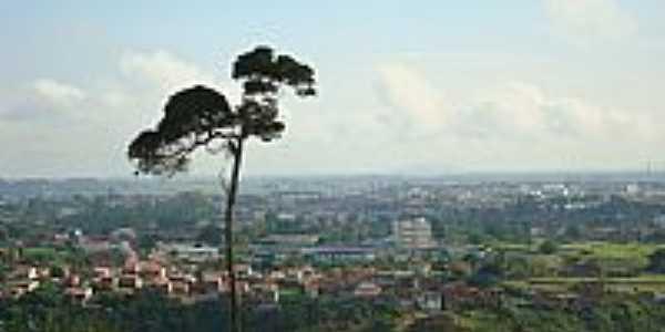 Vista parcial de Santo Antônio de Jesus-BA-Foto:cerrado