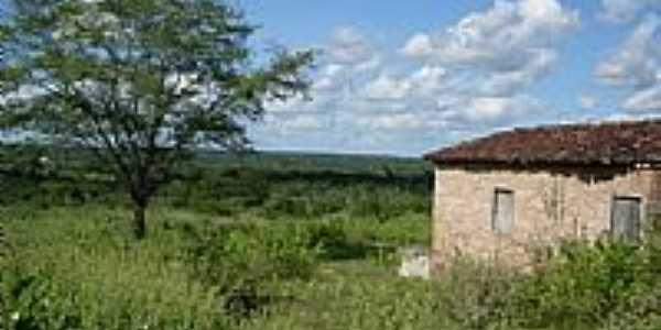 Casa na área rural em São Domingos-BA-Foto:Jorge LN