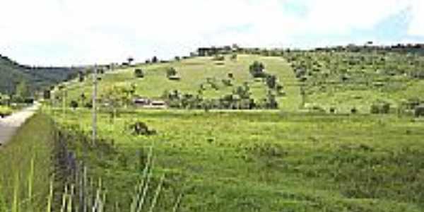 Fazenda Matos-Foto:wesleyportugal