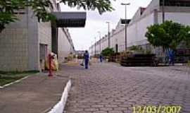 Cavaleiro - Centro de Manutenção-Foto:Diogo Autarquia