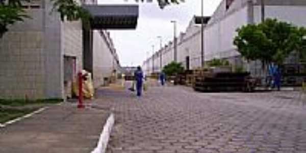 Centro de Manutenção-Foto:Diogo Autarquia
