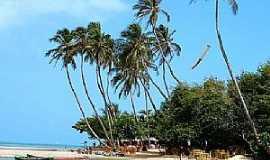 Jericoacoara - Jericoacoara-CE-Lindos coqueiros na praia-Foto:dani_rangel