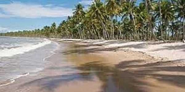 Boipeba-BA-Coqueiral na praia-Foto:viajeaqui.abril.com.br