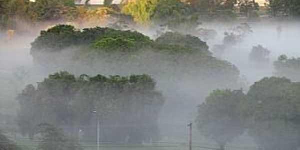 �guas Claras-DF-Foggy no Parque-Foto:pelosi