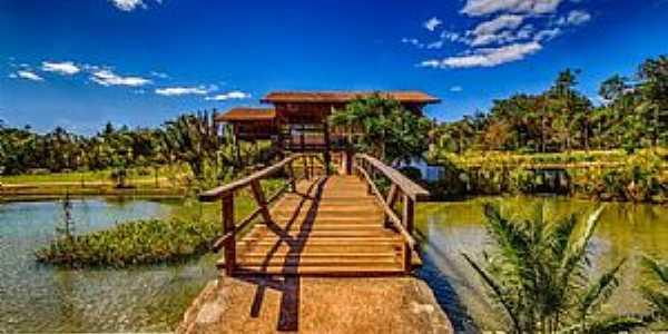 Jardim Botânico-DF-Passarela no lago-Foto:queropassagem.com.br