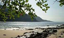 Trindade - Praia brava foto por R.Augusto Silva