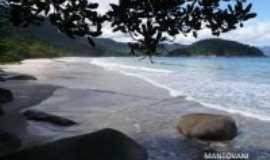 Trindade - Praia do Cachadaço, Por Luis Carlos Mantovani