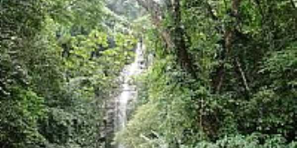 Cachoeira Toque-Toque Foto João Savioli