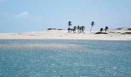 Águas Belas (Praia) - Águas Belas(Praia)-CE-Coqueiros na praia-Foto:www.ceararotas.com.br