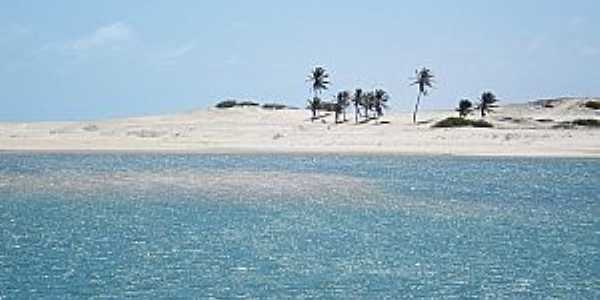 Águas Belas(Praia)-CE-Coqueiros na praia-Foto:www.ceararotas.com.br