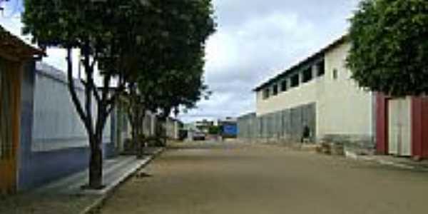 Rua Hermínio Araújo dos Santos-Foto:tiaoneiva
