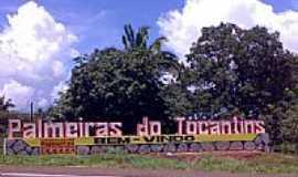 Palmeiras do Tocantins - Entrada da cidade de Palmeiras do Tocantins-Foto:amarildo varela