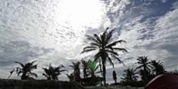 Praia do Canto Verde-CE-Entardecer nos coqueiros da Prainha-Foto:Attila Rivera