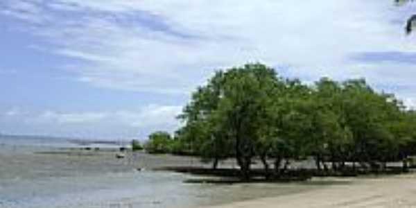 Praia de Magalhães-Foto:Francisco D Duarte